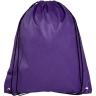 Purple - Tote