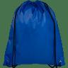 Royal Blue - Bag
